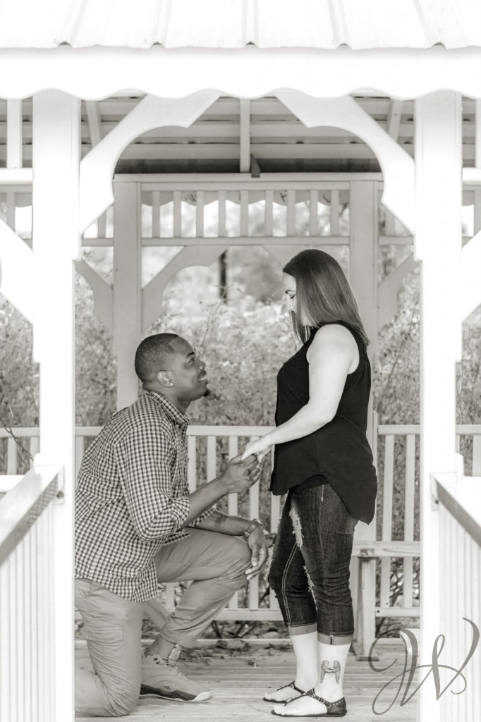 Proposal photographer